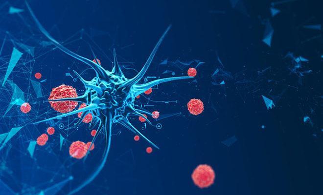Cele mai bune medicamente pentru prevenirea coronavirusului